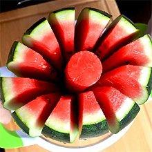 Zonfer 1pc Watermelon Slicer Multi Use Fruit Melon