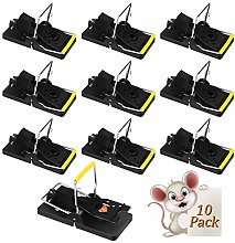 Zorara Rat Trap, Mouse Trap 10 Pack Reusable