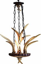 ZPP Novely Chandeliers- Chandelier Ceiling Light