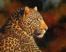 zqyjhkou Yellow leopard/Print wild leopard poster
