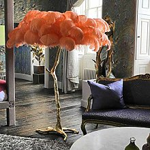 ZRABCD Real Feather Floor Lamp Modern Interior