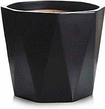 ZTMN Modern Black Flower Pot Large Octagonal