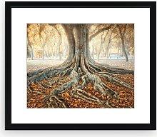 Zu Sanchez - Ancient Roots Framed Print & Mount,
