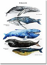 zuomo Fish Print Poster Whales Watercolor Wall Art