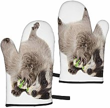 ZVEZVI Funny Raccoon Chewing Rawhide Bone Lying