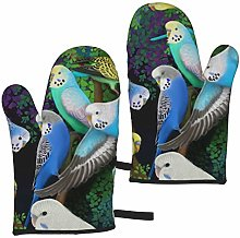 ZVEZVI Wristband Budgie Parakeets And Ferns Oven