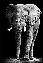 zxianc Canvas Poster African Wild Elephant Animals