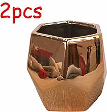 ZXL 2 Pcs Plant Pot Indoor-H8.3CM Ceramic Flower