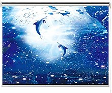 ZXL Ocean Landscape Window Roller Shades, 100%