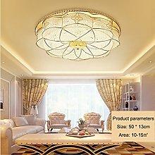 ZXS668 LED Chandelier/Ceiling Light Ceiling Light