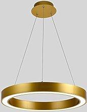 ZXS668 LED Chandelier/Ceiling Light Ring