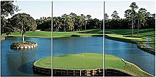 ZXYJJBCL Beautiful Golf Course Triptych Canvas