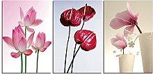 ZXYJJBCL Beautiful Lotus Plant Triptych Canvas