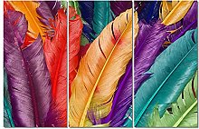 ZXYJJBCL Colored Feathers Triptych Canvas Print