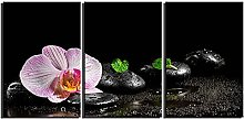 ZXYJJBCL Colored Flower Triptych Canvas Print Wall