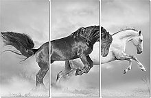 ZXYJJBCL Healthy Horse Animal Triptych Canvas
