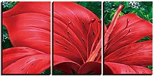 ZXYJJBCL Red Flower Plant Triptych Canvas Print