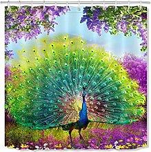 ZZ7379SL Spring peacock beautiful feather bathroom