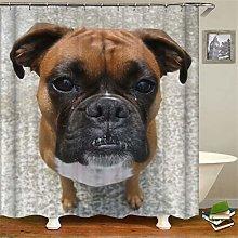 ZZZdz Dog Sitting On The Ground. Shower Curtain: